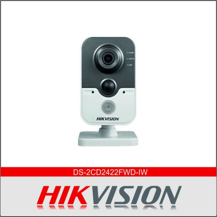 DS-2CD2422FWD-IW