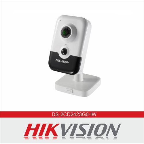 DS-2CD2423G0-IW هایک ویژن